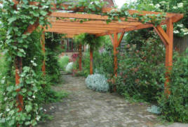 Note the way the bracing struts have been applied - giving stability along the length of the pergola, and also across the width